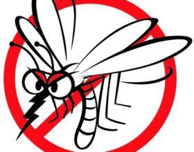 Értesítés földi szúnyoggyérítésről